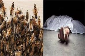 person dies due to bee attack villagers resentful of not getting doctors