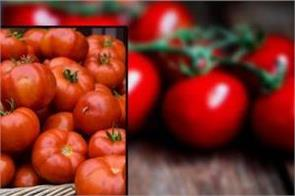the country felt the price of inflation the price of one kg tomato