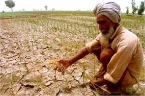 nearly 43 000 farmers and daily laborers committed suicide in 2019 ncrb
