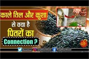 pitru paksha 2020 connection of black seeds and kusha