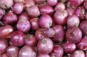 the average retail price of onion at the national level