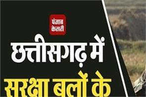 one naxal killed chhattisgarh
