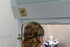 national news punjab kesari scientist corona virus usa