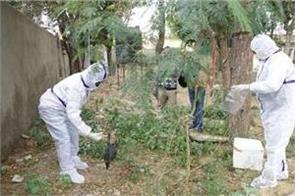 bird flu in india what is avian virus can people be infected by this