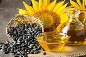 oil oilseeds prices stabilized before business remains sluggish before budget