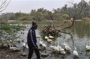 bird flu hauz khas park dwarka sector nine park closed in delhi