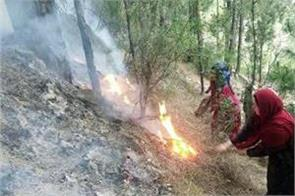fire in bhaderwah forest