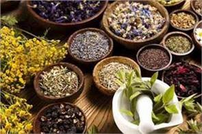 now the world s focus is on indian ayurveda