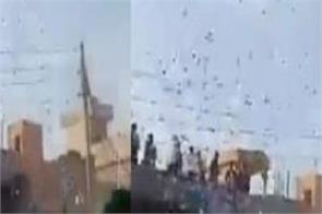 international news pakistan video viral social media bahauddin