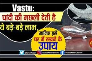 vastu tups about silver fish and super fish in hindi