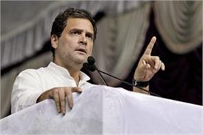 rahul gandhi will be given ticket by asking workers in the assembly elections