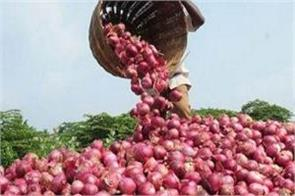 mstc will make auction of onions for the help of nasik farmers