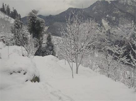 लगातार बर्फबारी से खूबसूरत हुए पहाड़, देखिए तस्वीरें