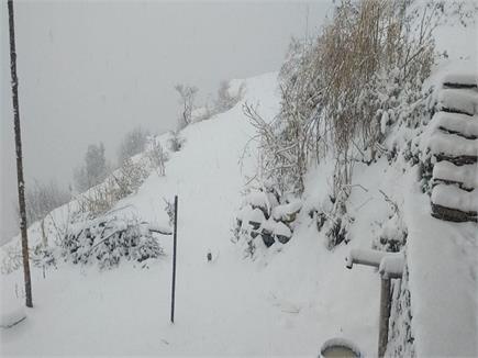 पहाड़ों की रानी शिमला और सिरमौर में सीजन का पहला Snowfall (Watch Pics)