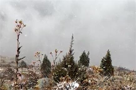हिमाचल में मौसम ने ली करवट, लाहौल में शुरू हुई बर्फबारी (PICS)