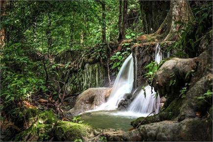Tourists के लिए जन्नत से कम नहीं कुल्लू का गांव जीभी (PICS)