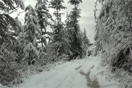 ताजा Snowfall से गुलजार हुआ हिमाचल देखिए (PICS)