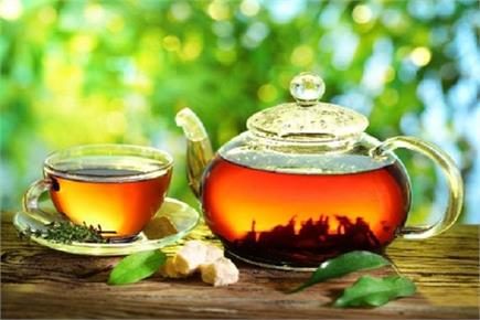 देखने हैं चाय के बागान..तो चलें आएं पालमपुर (Watch Pics)