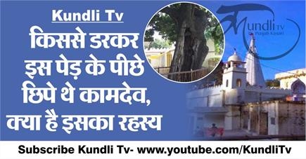 Kundli Tv- किससे डरकर इस पेड़ के पीछे छिपे थे कामदेव, क्या है इसका...
