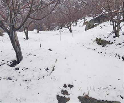 हिमाचल में ताजा Snowfall की देखें तस्वीरें