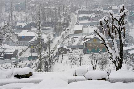 देखिए श्रीनगर में बर्फबारी की खूबसूरत तस्वीरें...सड़कों से लेकर पेड़...