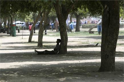 गर्मी ने किया बेहाल, पेड़ों की छांव का सहारा ले रहे लोग