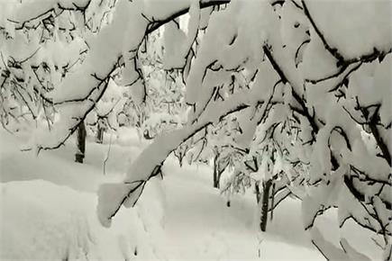 बर्फ से गुलजार हुई देवभूमि, देखिए (PICS)