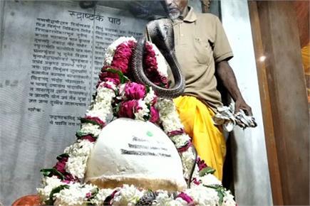 प्रयागराज में जहरीले सांपों से किया गया भगवान शिव का अभिषेक