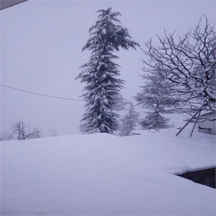 हिमाचल में फिर बर्फ से सफेद हुए पहाड़, तस्वीरों में देखिए नजारा