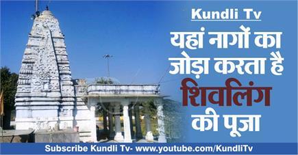 Kundli Tv- यहां नागों का जोड़ा करता है शिवलिंग की पूजा
