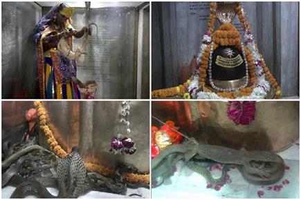अनोखी भक्ति: यहां सर्प और बिजखोपड़ों से किया गया भगवान शिव का अभिषेक