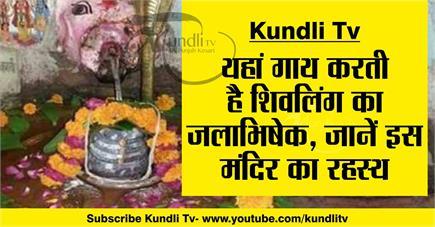 Kundli Tv- यहां गाय करती है शिवलिंग का जलाभिषेक, जानें इस मंदिर का...