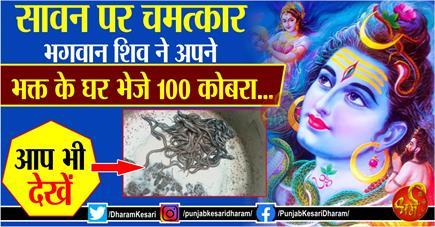 सावन पर चमत्कार : भगवान शिव ने अपने भक्त के घर भेजे 100 कोबरा... आप...