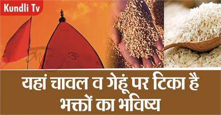 Kundli Tv- यहां चावल व गेहूं पर टिका है भक्तों का भविष्य