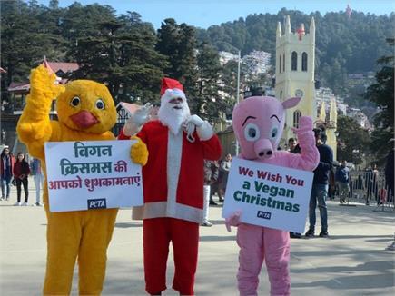 तस्वीरों में देखिए : शिमला में Christmas की रौनक