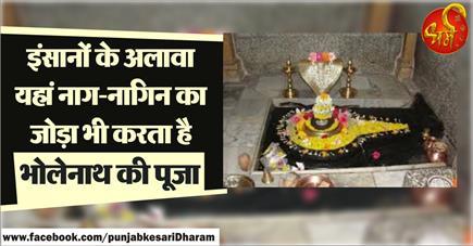 इंसानों के अलावा यहां नाग-नागिन का जोड़ा भी करता है भोलेनाथ की पूजा
