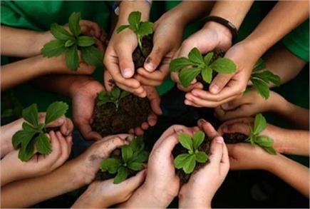 विश्व पर्यावरण दिवस: हमीरपुर में तबाह पौधे को गोद लेकर लोगों ने पेश...