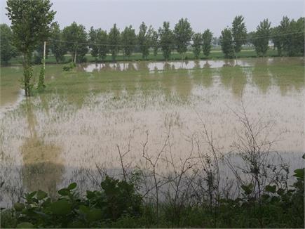 बाढ़ से निपटने के लिए जन-प्रशासन हुए एक, गांव बचाने के लिए मशक्कत जारी
