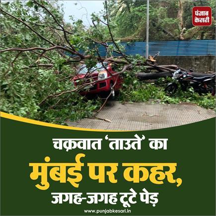 चक्रवात 'ताउते' का मुंबई पर कहर, जगह-जगह टूटे पेड़