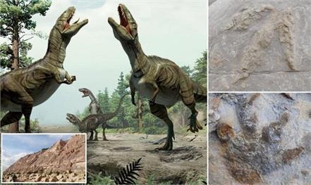 britain  dinosaurs  footprints  new report