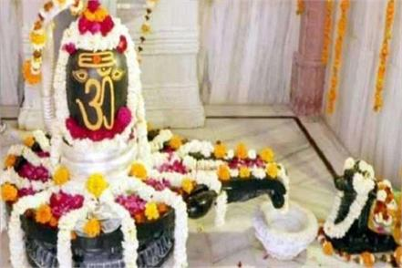 find out how many types of shivlings there are and which part is important