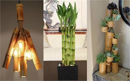 amazing bamboo decor ideas