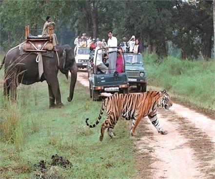 dudhwa national park opened for tourists
