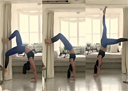 sushmita and jacqueline handstand pose for toned figure
