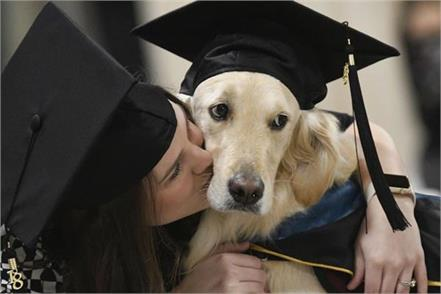 us service dog gets honorary diploma