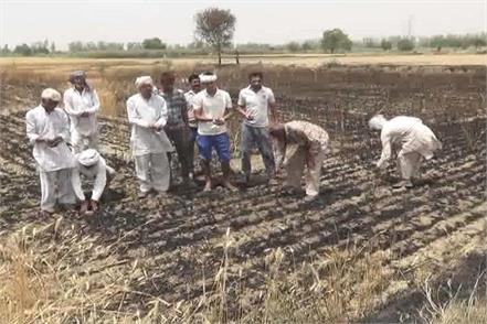the high voltage wire of the fire caused crop failure