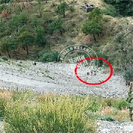 another big accident in himachal shimla car fall in ditch