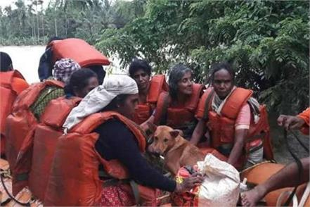 a woman saves dogs in kerala flood