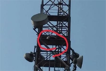 bhalswa dairy towers police