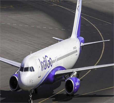 indigo aai get 1 35 lakh sting over mosquitoes in plane